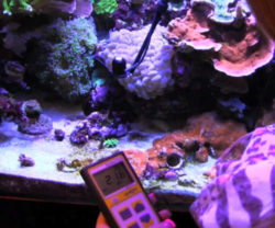 MQ-100 for aquarium use