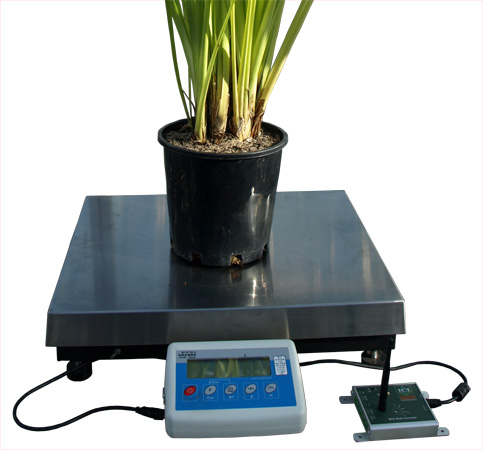 WSM2 - Weigh Scale Meter 120kg