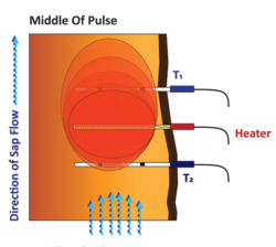 Diagram 2 Showing Middle of SFM1 Heat Pulse