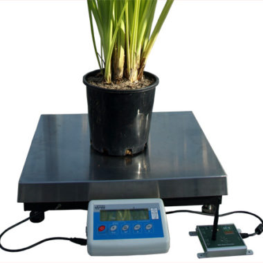 WSM1 Weigh Scale in use