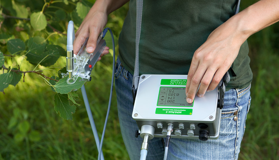 MINI-PAM-II/R Photosynthesis Yield Analyzer